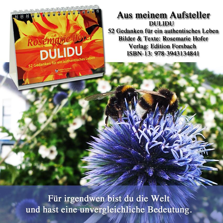 Aufsteller-DULIDU-Bild-14-©-by-Rosemarie-Hofer
