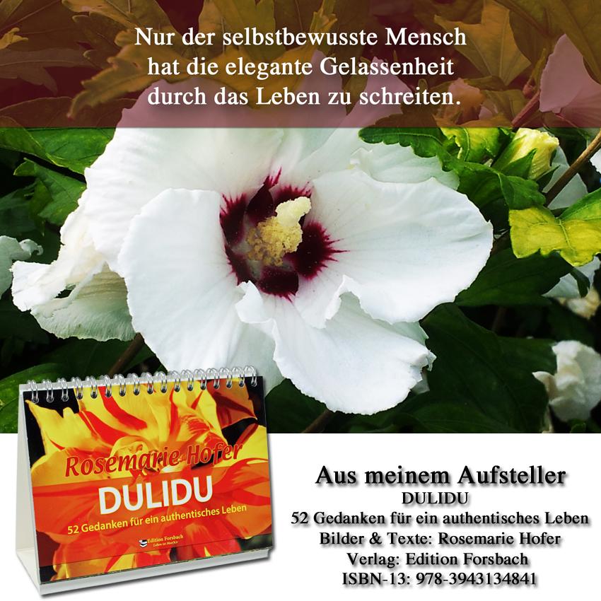 Aufsteller-DULIDU-Bild-15-©-by-Rosemarie-Hofer
