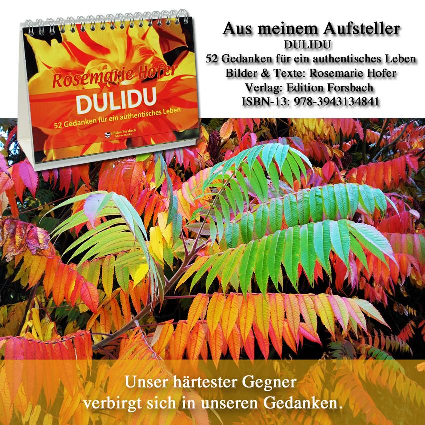 Aufsteller-DULIDU-Bild-17-©-by-Rosemarie-Hofer