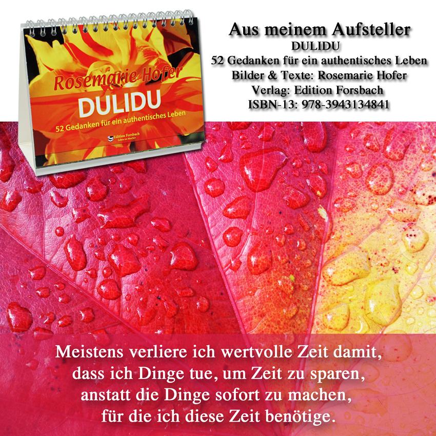 Aufsteller-DULIDU-Bild-20-©-by-Rosemarie-Hofer