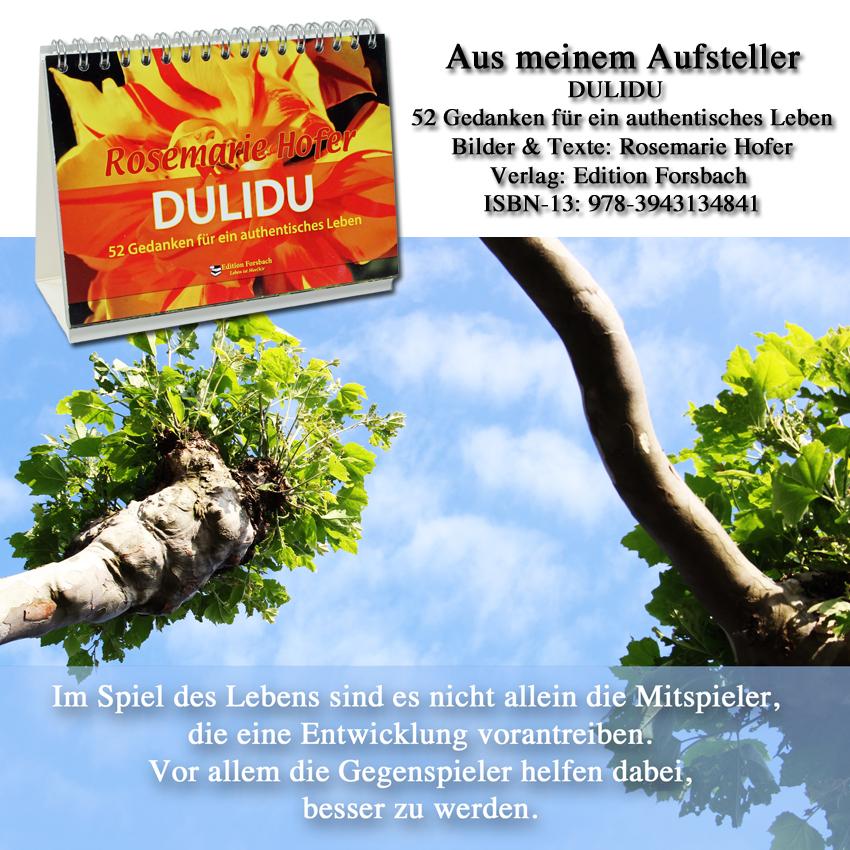 Aufsteller-DULIDU-Bild-26-©-by-Rosemarie-Hofer
