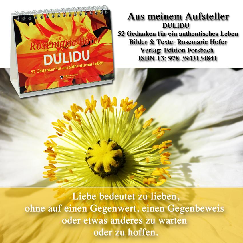 Aufsteller-DULIDU-Bild-39-©-by-Rosemarie-Hofer