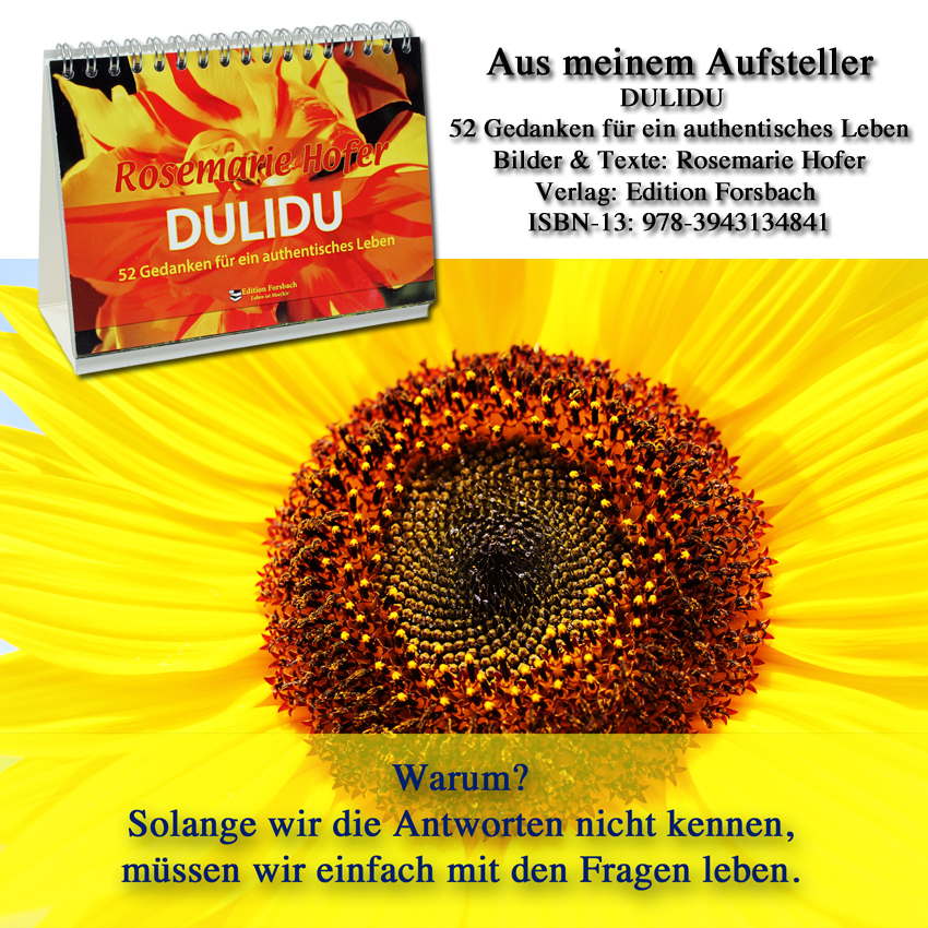 Aufsteller-DULIDU-Bild-50-©-by-Rosemarie-Hofer