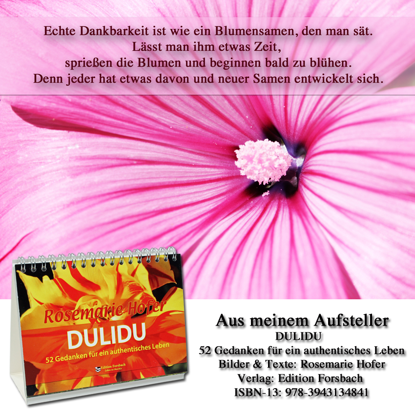 Aufsteller-DULIDU-Bild-58-©-by-Rosemarie-Hofer